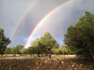 Double rainbow III
