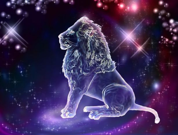 20428908 - lion is the king of animals  the constellation of leo is a sign of the leaders  a strong spirit, strong body, strong will