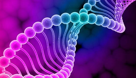 Energy Shift Update ~ Plasma Bursts, Next Step in DNA Upgrades  Genetics-1100x542