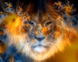 8-8 Lion's Gate 4054866
