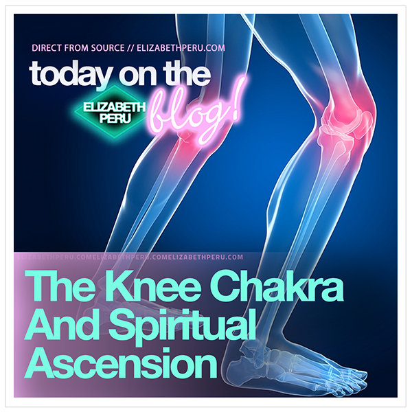 website.blog.the.knee.chakra.and.spiritual.ascension-web.png